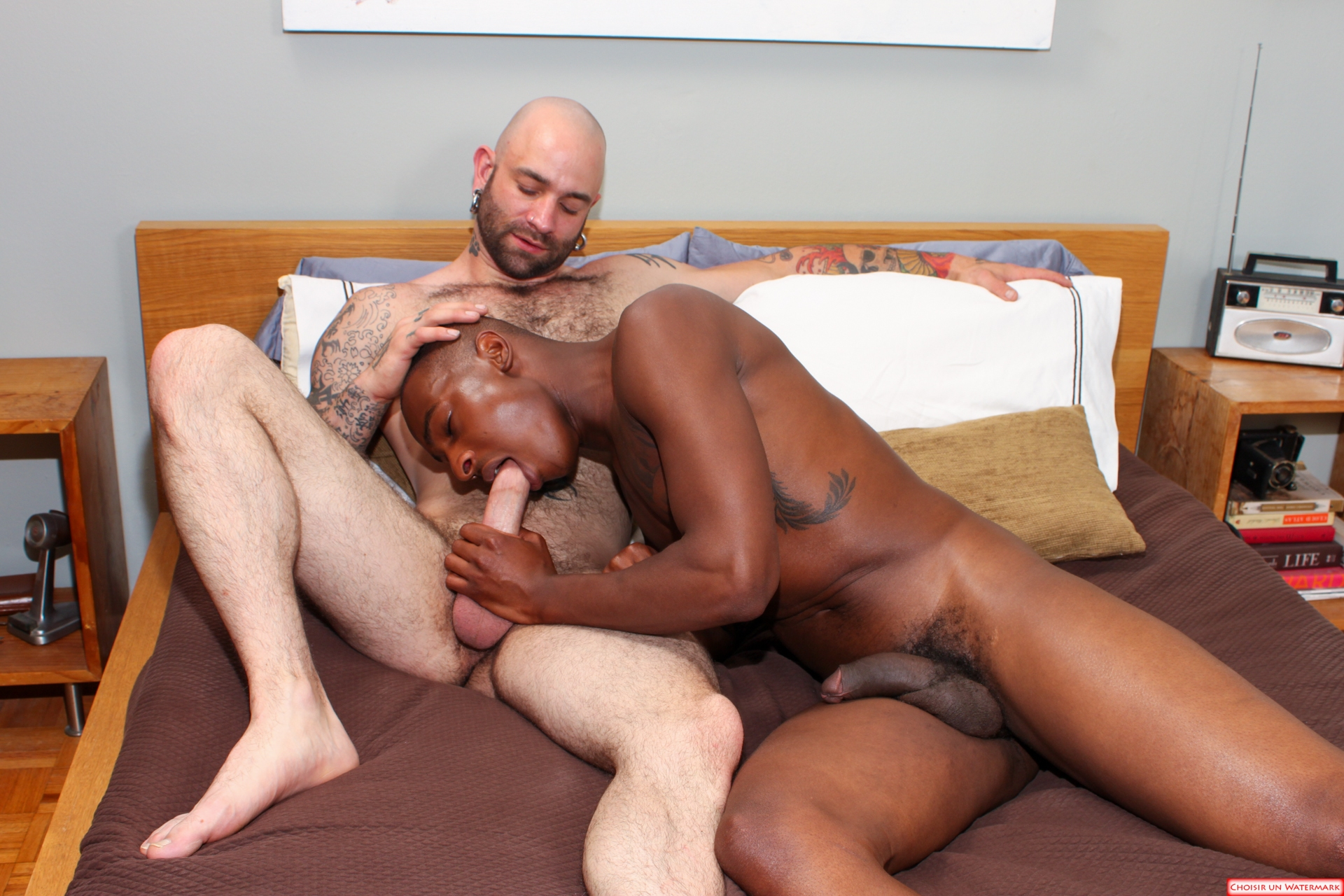 you porn black man № 63296
